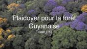 Plaidoyer pour la forêt Guyanaise